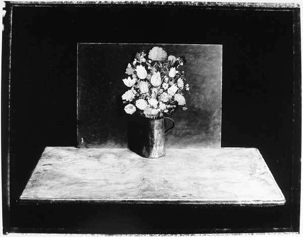 Pamela Hawkes, Still Life with Bosschaert Flowers, Silver print, 14-1/2 x 18 -3/8 in, 2000