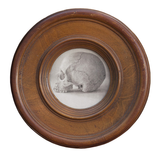 Jefferson Hayman Skull Still Life
