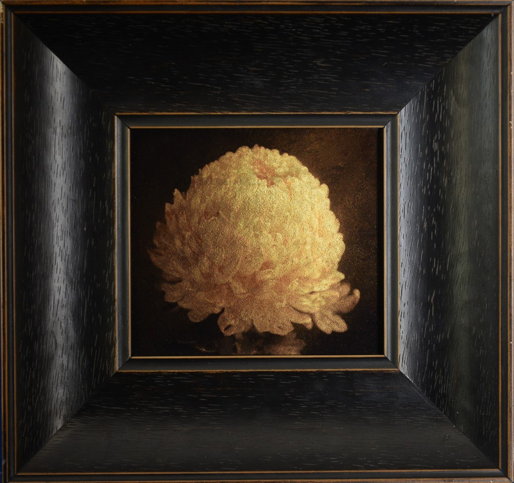 Kate Breakey, Chrysantheum II