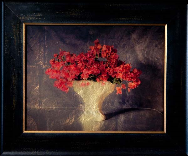 Kate Breakey, Vase with Bougainvillea