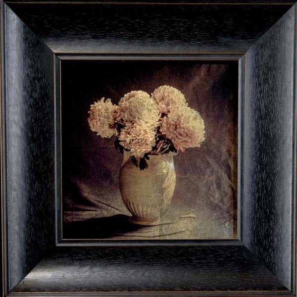 Kate Breakey, Vase with Chrysanthemums II