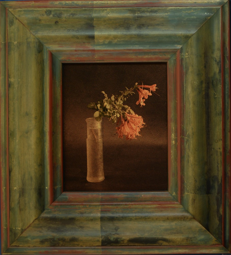 Kate Breakey, Virginia Creeper in Jar