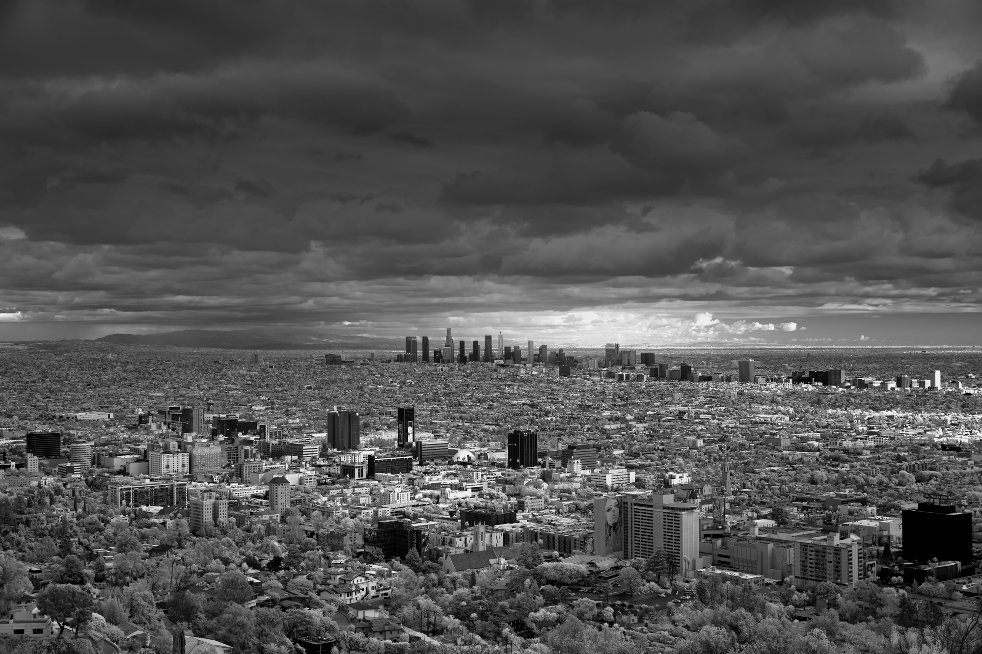 Urbane, Mitch Dobrowner, Catherine Couturier Gallery