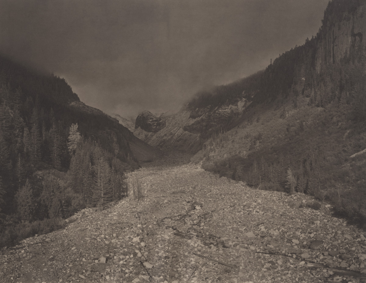 Takeshi Shikama Silent Respiration of Forests - Pacific Northwest: Mt. Rainer #3