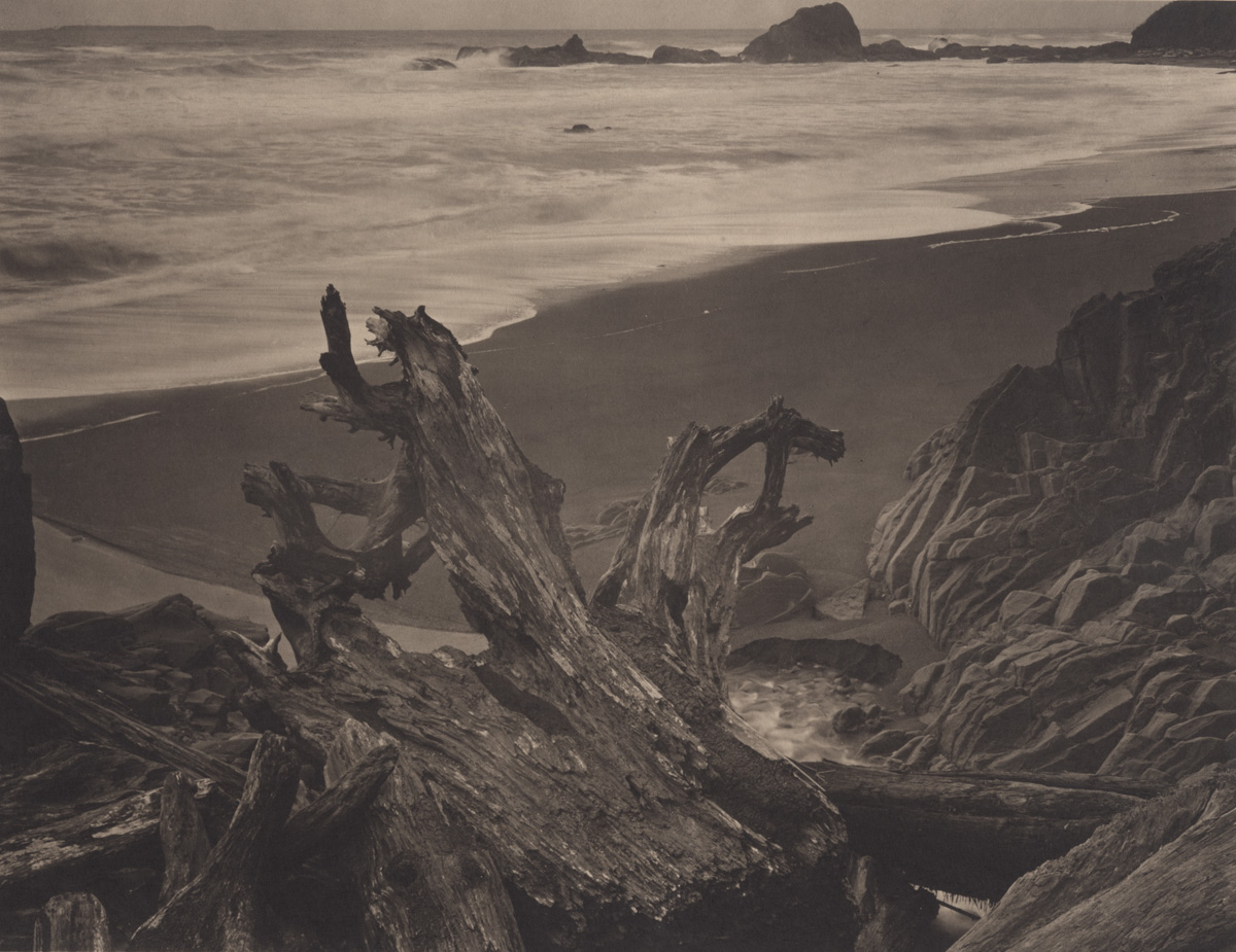 Takeshi Shikama Silent Respiration of Forests - Pacific Northwest: Ruby Beach #2