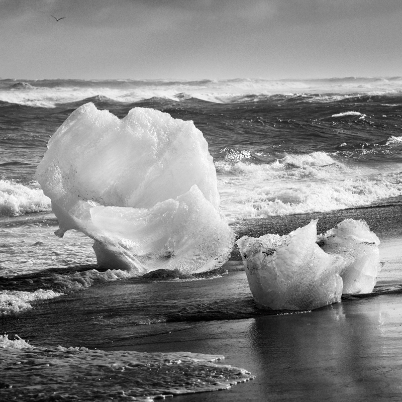 jean miele - Small Icebergs at Jokulsarlon