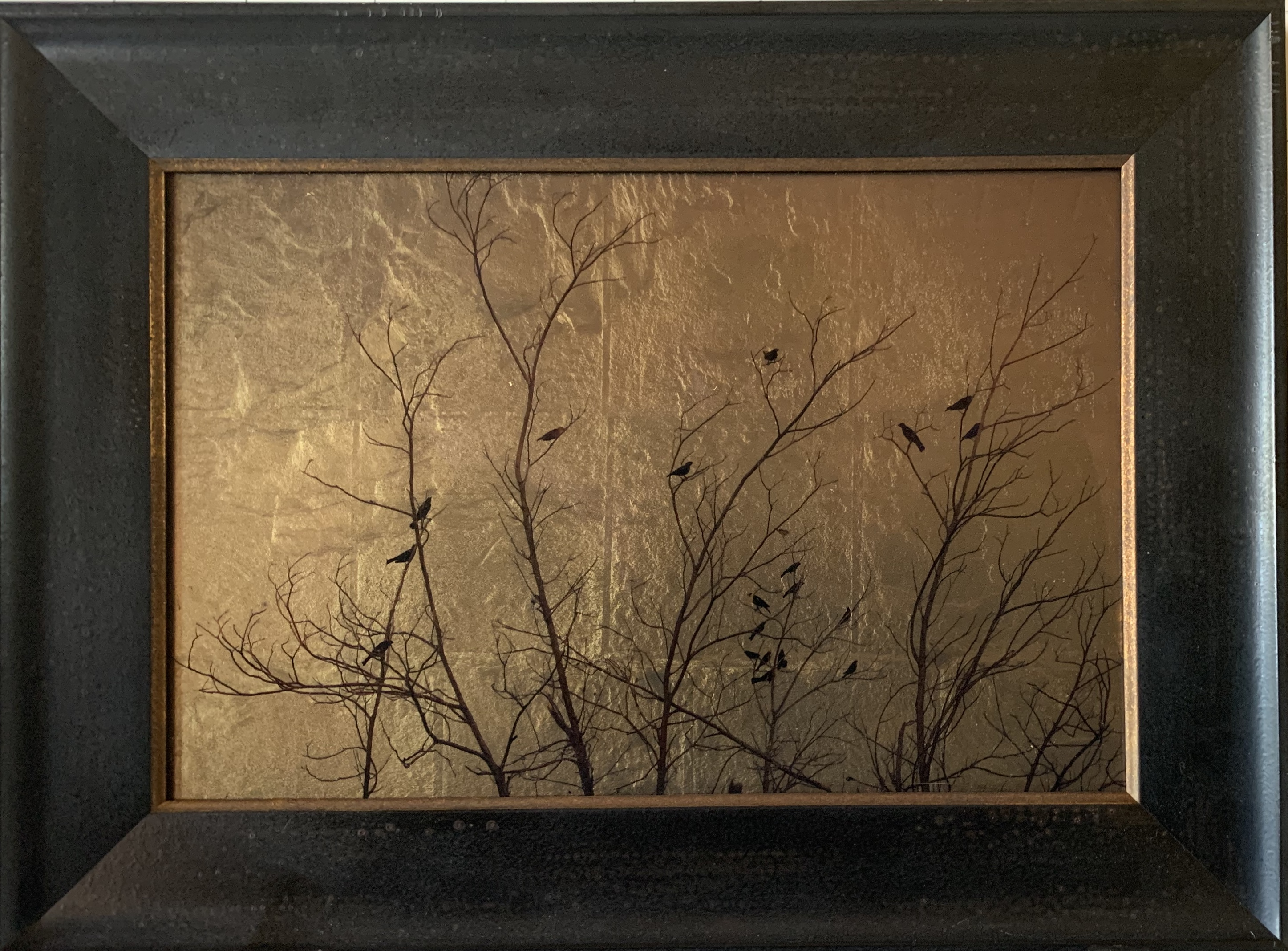 Twenty-two Birds in Bare Tree, New Mexico, Kate Breakey, Modern Day Orotone, Catherine Couturier Gallery