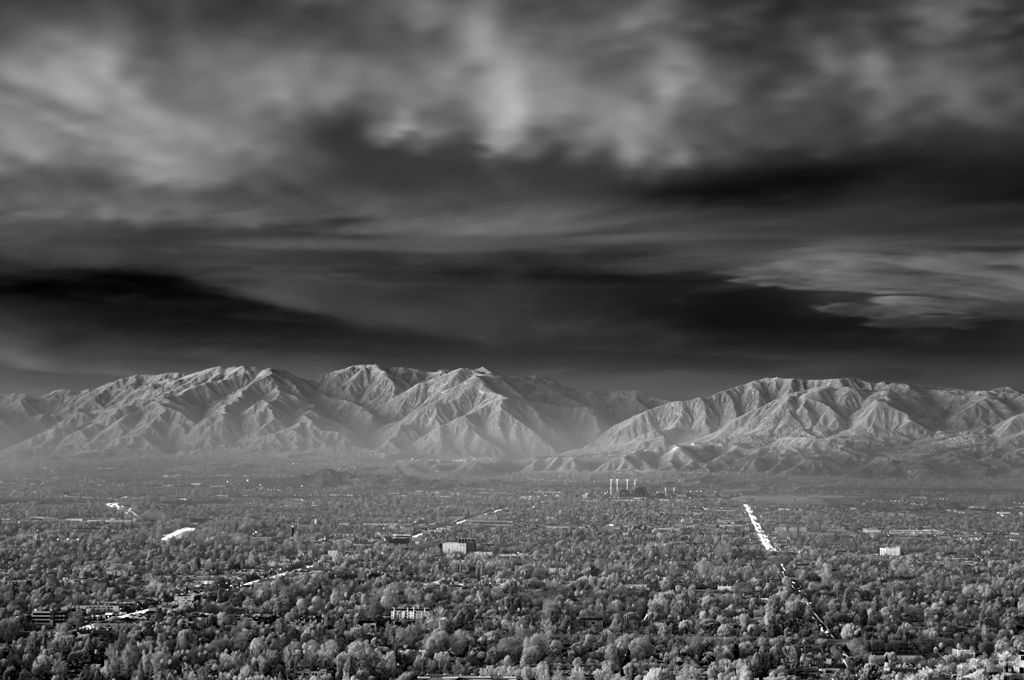 Mitch Dobrowner, City Lights