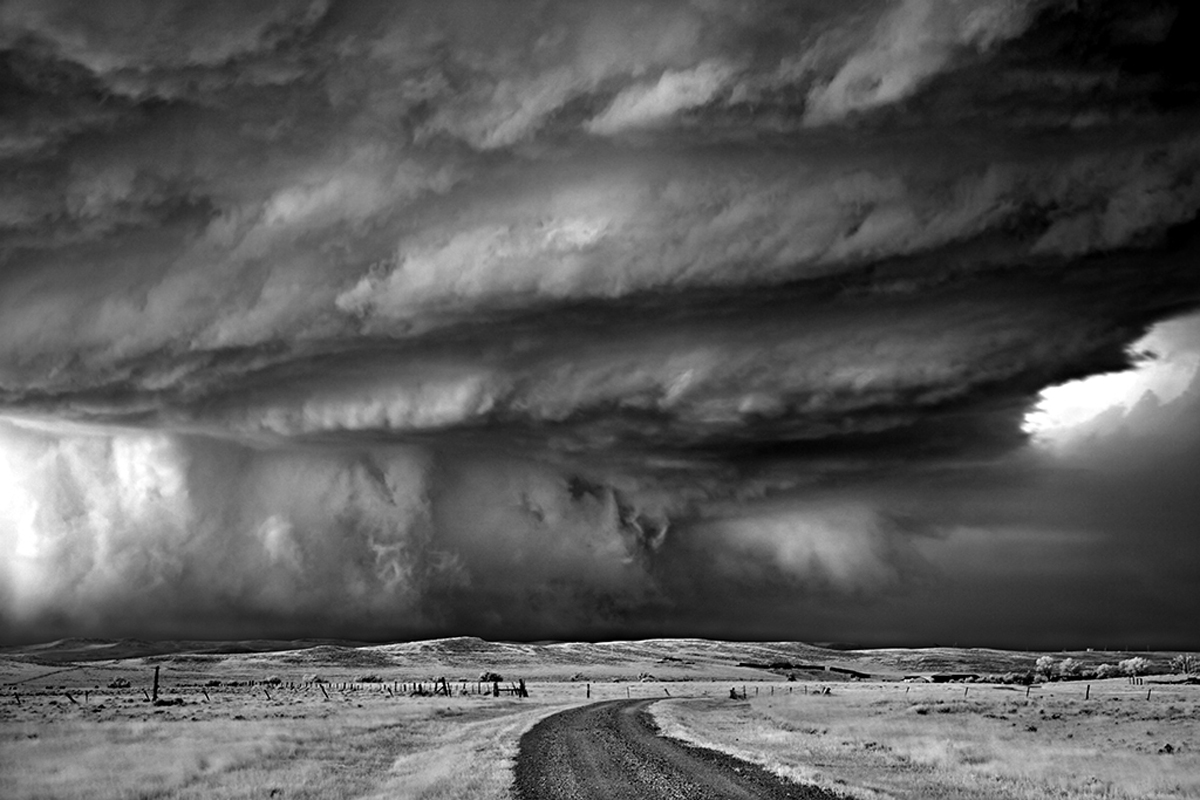 Mitch Dobrowner, Bears Claw, Catherine Couturier Gallery