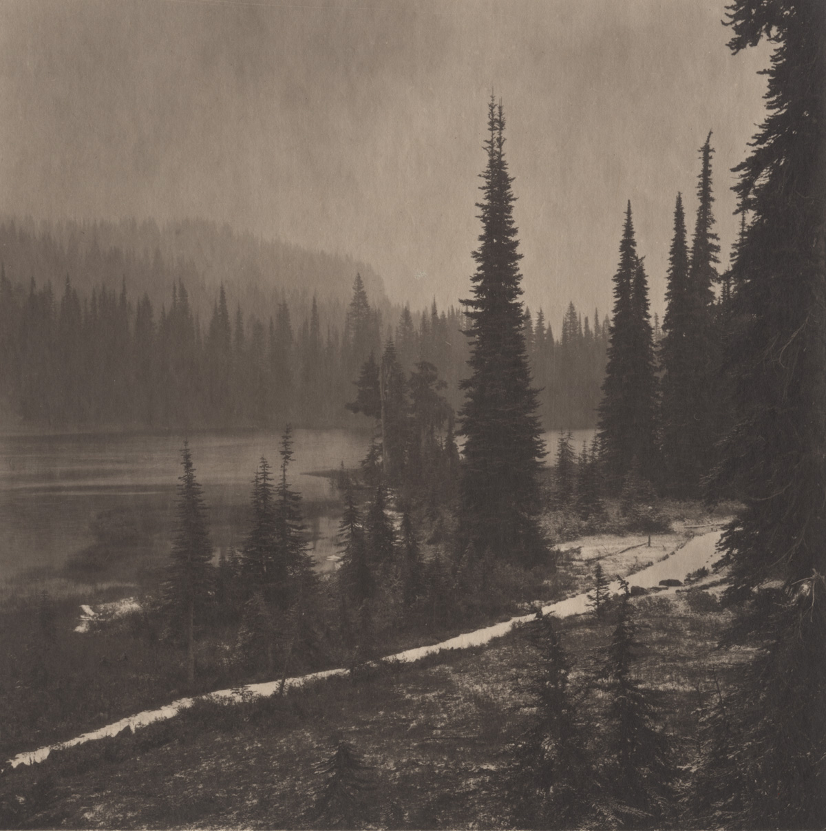 Takeshi Shikama Silent Respiration of Foreses - Pacific Northwest Mt. Rainer #2
